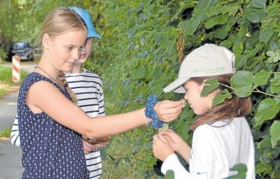 Na, wonach riecht das? Marjut Hoppe hält Lisa das Blatt einer Knoblauchsrauke vor die Nase; Quelle: Silke Rönnau, Kieler Nachrichten