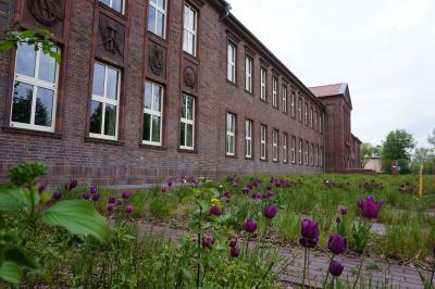 Foto zur Meldung: Baustellenrundgang in der Friedrich-Hoffmann Oberschule
