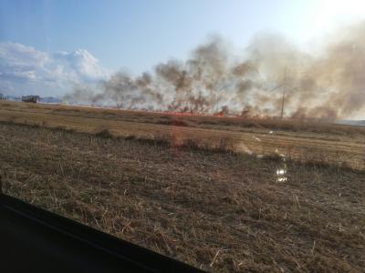 Foto zur Meldung: Feld brennt