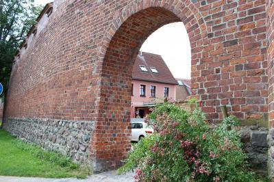 Foto zur Meldung: Nord- und ostdeutsche Rosenfreunde kommen in Wittstock zusammen