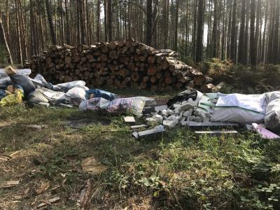 Umweltkriminalität im Nauener Stadtforst in der vergangen Woche.