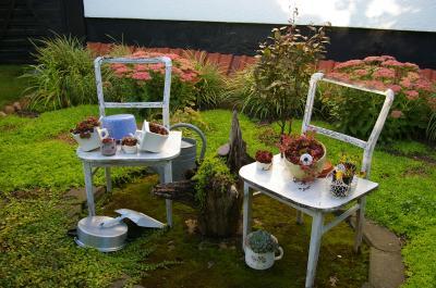 Vorschaubild zur Meldung: Pflanzenvielfalt im Garten und Infos der Rosenfreunde