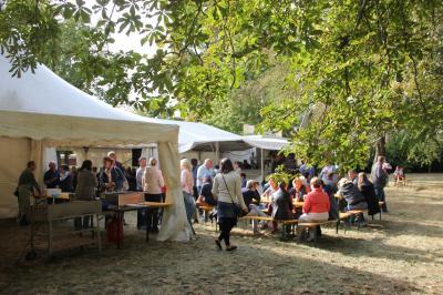 Vorschaubild zur Meldung: Stadtfest 2019 in Freyenstein