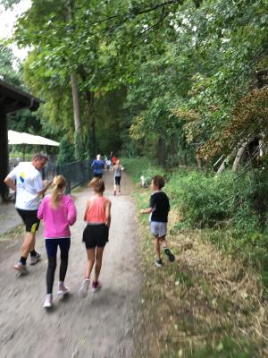 Training zum Mini-Marathon 2019
