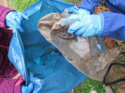 Ausgerüstet mit Handschuhen sammelten die Schülerinnen und Schüler der Grundschule Tangstedt Müll