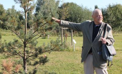 Vorschaubild zur Meldung: Ein Baum soll an verstorbenen Professor erinnern