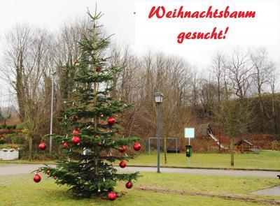 Foto zur Meldung: Schmalensee braucht einen Weihnachtsbaum