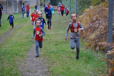 Vorschaubild zur Meldung: Läufer setzen Erfolgsserie fort