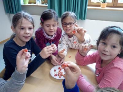 Foto zur Meldung: In der Grundschule ging es um das Thema Plastikwelt