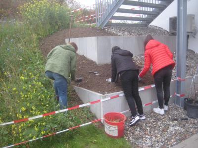 Foto zur Meldung: Start eines Schulgartens mit Beerensträuchern