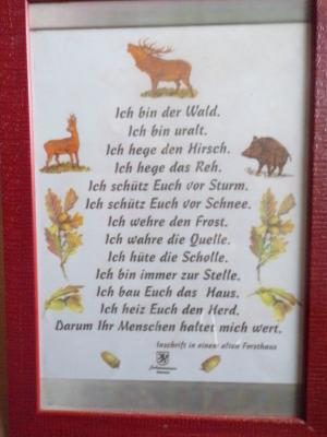 """Foto zur Meldung: Bildungsbausteine """"Wald"""""""