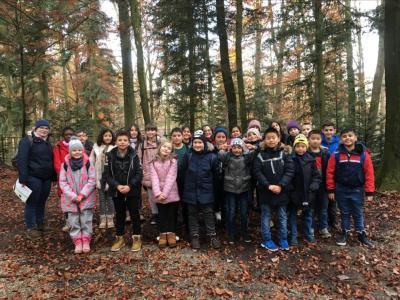 Vorschaubild zur Meldung: Waldausflug der Klasse 4c