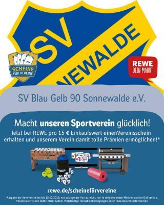 Foto zur Meldung: Endspurt. REWEW Vereinsschein für den SV Blau Gelb 90
