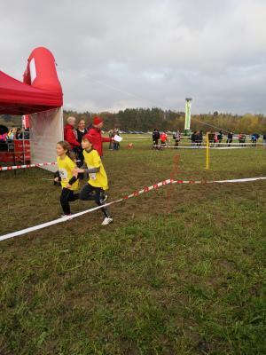 Foto zur Meldung: Schulmeisterschaften Crosslauf