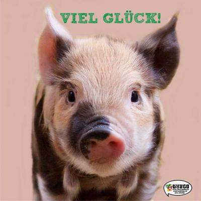 VielGlueck2020