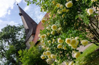 Die St.-Petri-Kirche in Steinwedel