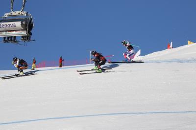 Kein Schnee - kein Weltcup - nach den Snowboardern muss auch die Weltelite der Skicrosser auf einen Start am Feldberg verzichten - Foto: Joachim Hahne / johapress