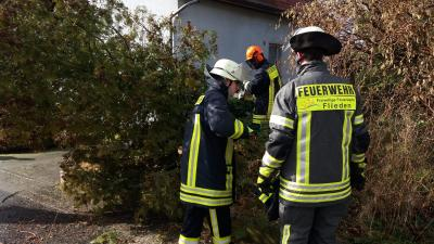 """Vorschaubild zur Meldung: Sturmtief """"Sabine"""" sorgt für elf Einsätze in der Gemeinde Flieden –Feuerwehr Flieden über 10 Stunden im Einsatz"""