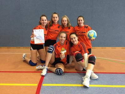 Vorschaubild zur Meldung: Regionalfinale im Volleyball