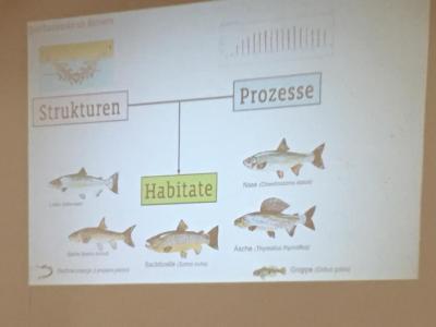 Vorschaubild zur Meldung: Gewässerseminar 2020