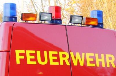 Foto zur Meldung: Vier Mann und ein Teleskoplader – Feuerwehr beseitigte Baum