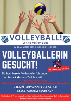 Vorschaubild zur Meldung: Volleyball: Verstärkung gesucht!💪