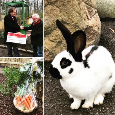 Foto zur Meldung: Die neue Kaninchenanlage ist eingeweiht!