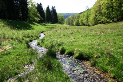 Vorschaubild zur Meldung: Naturparkführungen bis 19. April abgesagt