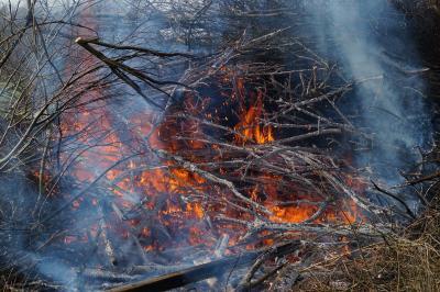 Foto zur Meldung: Gartenabfälle abbrennen ist illegal und unsolidarisch