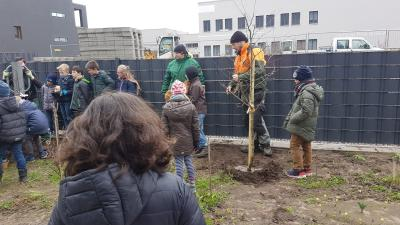 Vorschaubild zur Meldung: Baumspenden der Volkshochschule Hildesheim