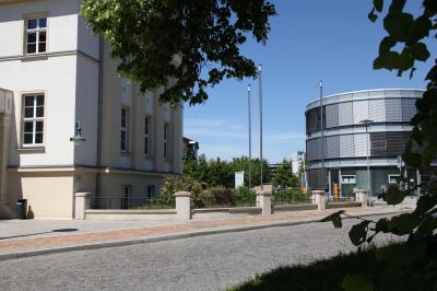 Bild der Meldung: Neuartiges Coronavirus: Entwicklungen im Landkreis Oberspreewald-Lausitz