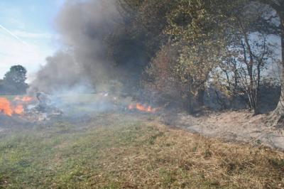 Foto zur Meldung: Trockenheit: Feuerwehren warnen vor Wald- und Flächenbränden