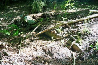 Foto zur Meldung: Alteisen: Was in unserer Gemarkung so vor sich hin rostet