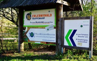 Foto zur Meldung: Sommerferienaktion im ErlebnisWald Trappenkamp