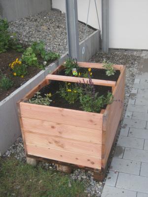 Vorschaubild zur Meldung: Schülergarten und Hochbeet