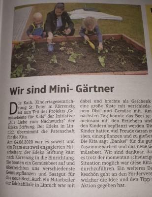 Bild der Meldung: Mini Gärtner in der KiTa