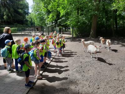 Vorschaubild zur Meldung: Tierparkbesuch Angermünde der Vorschulgruppe