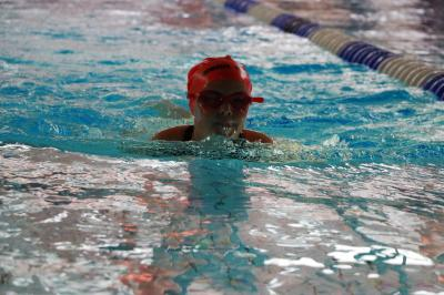 Schwimmer beginnen mit dem Training