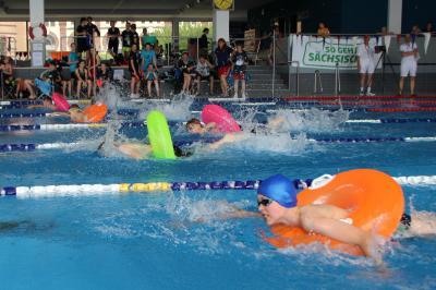 Vorschaubild zur Meldung: Schwimmwettkampf in Görlitz