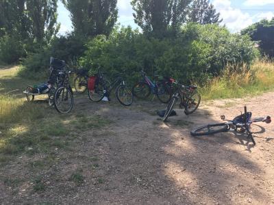 Vorschaubild zur Meldung: Radtour der JG nach Reppichau