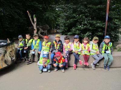 Foto zur Meldung: Unser Ausflug in den Zoo KiTa Sonnenblume