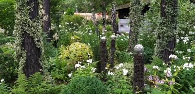 Vorschaubild zur Meldung: Von beeindruckend bis spektakulär: Gartenreise ins Wendland und die Lüneburger Heide