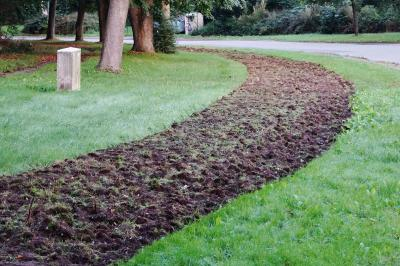 Foto zur Meldung: Grünstreifen werden zu Blühstreifen