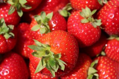 Vorschaubild zur Meldung: Die süße Erdbeer-Zeit ist nun auch bei uns vorbei.