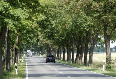 Foto zu Meldung: Waldbesitzer und Grundstückseigentümer aufgepasst!