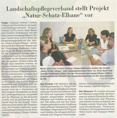 Torgauer Zeitung 1. August 2020