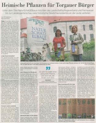Torgauer Zeitung 31. August 2020
