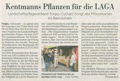 Torgauer Zeitung 8. September 2020