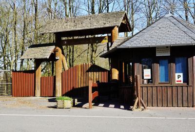 Foto zur Meldung: Hundetag im Erlebniswald Trappenkamp am 25. Oktober