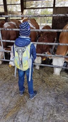 Wanderung zum Bauernhof